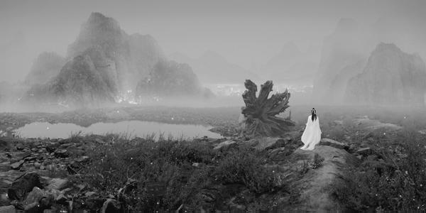 Yang Yongliang, 'Wolf and Landmines' (2012)