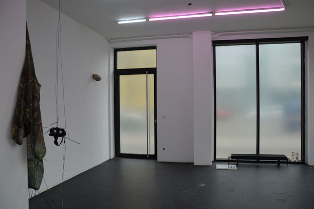 Antoine Renard, Jurassic Haze (2015). Exhibition view. Courtesy Center, Berlin.