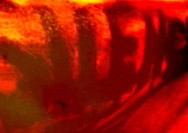Evelin Stermitz, video still from 'Silence', 2009. Courtesy of the artist.
