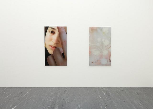 Rosa Rendl, 'What you desire' (2015). Exhibition view. Courtesy 21er Haus, Vienna.