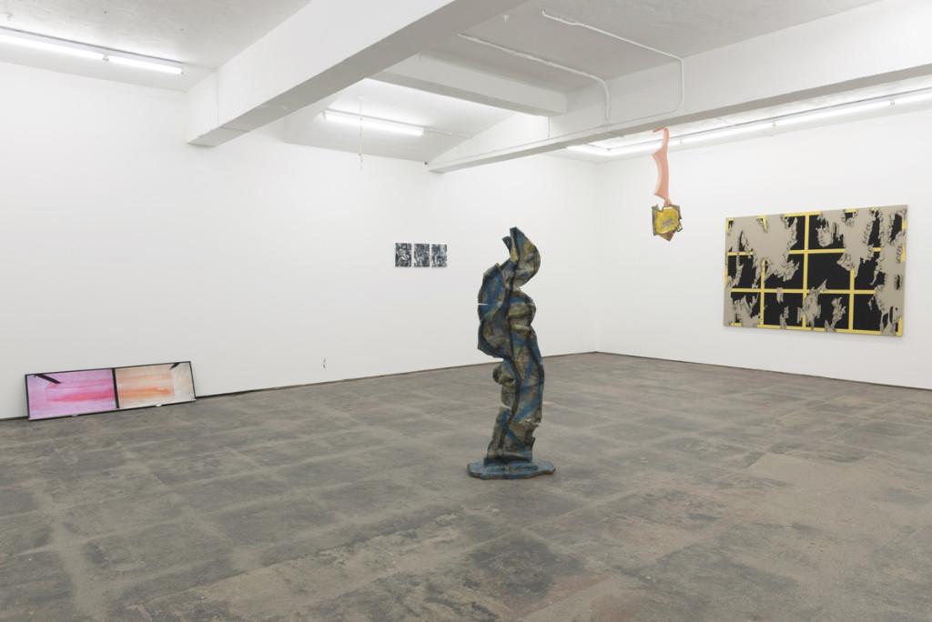Basic Instinct (2015). Exhibition view. Courtesy Seventeen, London.