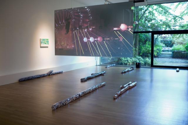 Anne de Vries, 'Critical Mass : Pure Immanence' (2015). Install view.