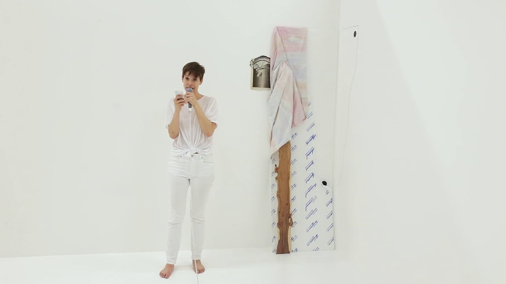 Sophie Jung, The Servant Problem (White House Cornered), video still from performance documentation (2015). Courtesy the artist