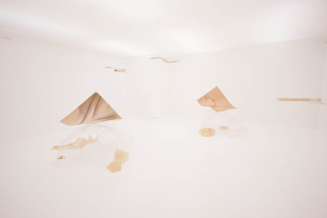 Anna Slama, techskin (2015), installation shot. Courtesy the artist and Konstanet.