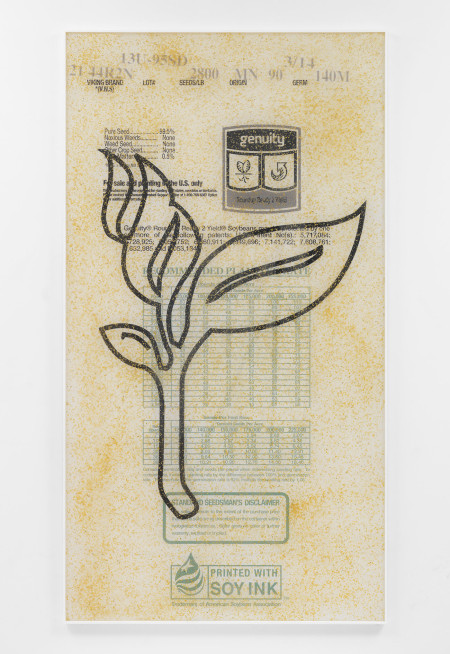 Artie Vierkant, 'Plant expression constructs 4, Soybean MON89788 (Exploit)', (2015). Courtesy the artist.