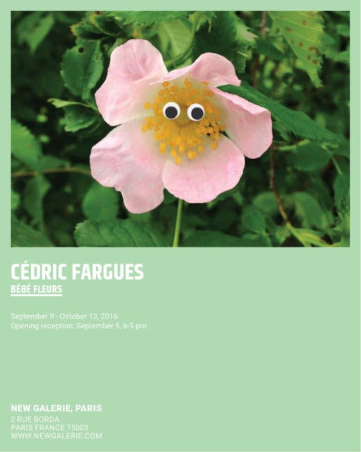 Cédric Fargues @ New Galerie, Sep 9 - Oct 13