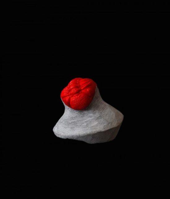 Katja Larsson @ Cecilia Hillström Gallery, Oct 6 - Nov 12