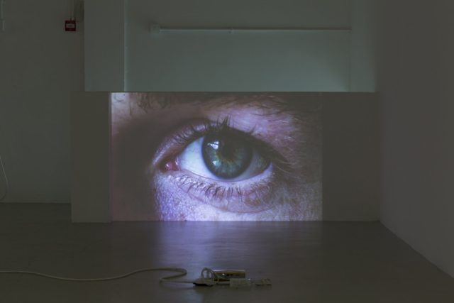 Gina Folly, Pleasures and Terrors (Jeremy) (2016). Installation view. Images courtesy of the Artist and Almanac, London